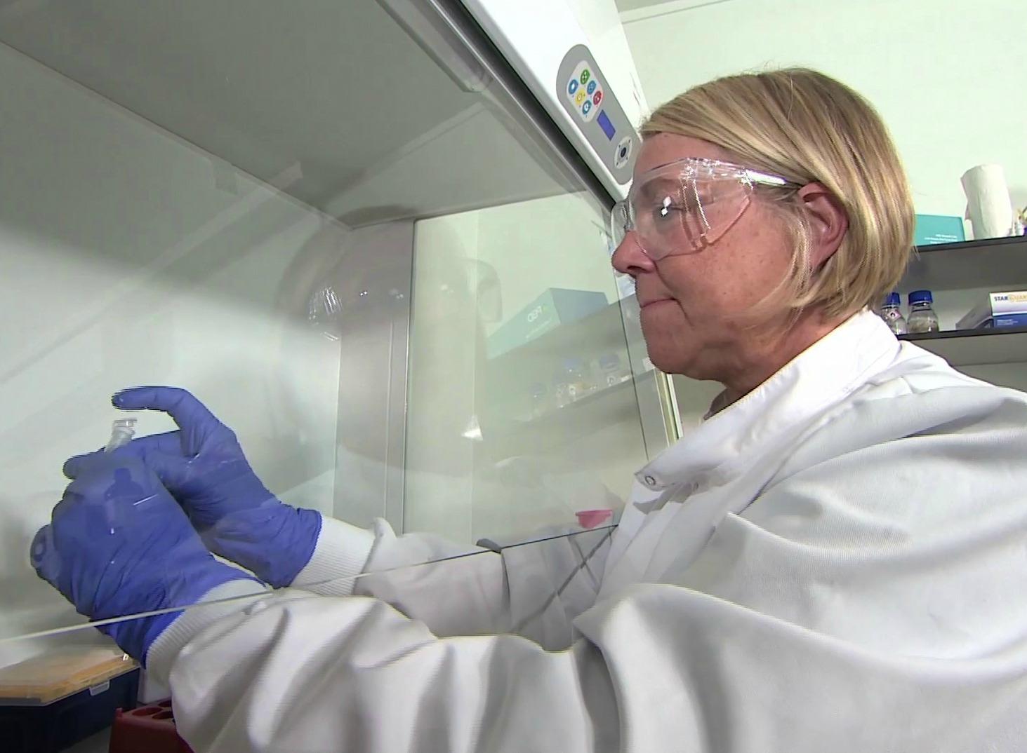 PBD Biotech lab